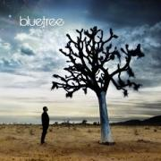 Bluetree - God Of This City