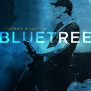Free Song Download From Bluetree