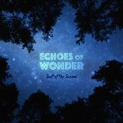 LTTM Awards 2015 - No. 4: Salt Of The Sound - Echoes Of Wonder